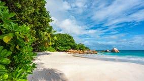 在anse拉齐奥的天堂海滩在塞舌尔群岛68 免版税图库摄影