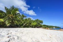 在anse拉齐奥, praslin,塞舌尔群岛69的惊人的天堂海滩 免版税库存图片