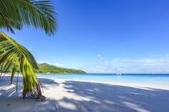 在anse拉齐奥, praslin,塞舌尔群岛15的惊人的天堂海滩 免版税库存照片