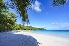 在anse拉齐奥, praslin,塞舌尔群岛30的惊人的天堂海滩 免版税图库摄影