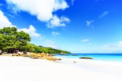 在anse拉齐奥, praslin,塞舌尔群岛77的惊人的天堂海滩 库存图片