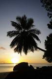 在Anse的日落la Mouche,塞舌尔群岛 库存图片