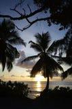 在Anse Takamaka,塞舌尔群岛的日落 免版税库存照片