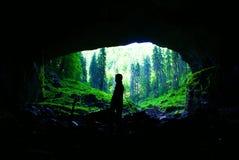 洞在Apuseni山的科伊瓦岛母马,罗马尼亚 图库摄影