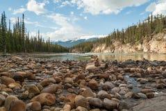 在Athabasca River& x27的一个石被装载的海滩; s边缘 库存照片