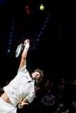 在ATP世界游览室内网球赛的罗宾・哈塞服务 免版税图库摄影