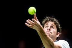 在ATP世界游览室内网球赛的罗宾・哈塞服务 免版税库存照片