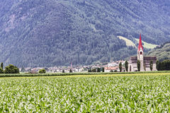在Aurina谷的Tures在阿尔卑斯,意大利 免版税库存照片