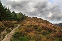 在autmn爱尔兰的惊人的山路看起来象stirway对hea 库存图片