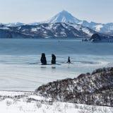 在Avachinskaya海湾和Viluchinsky火山的三个兄弟岩石 免版税库存照片