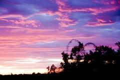 在AZ的冬天日落 库存照片