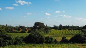 在bagan上的风景日出在缅甸Bagan是有数千的一个古城历史的佛教徒 库存图片