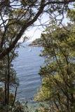 在Bagnaia,厄尔巴岛海岛,意大利附近的地中海海岸 免版税库存照片