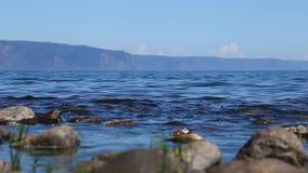 在Baikal湖岸的波浪  股票视频