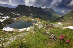 在Balea湖瑞士山中的牧人小屋的夏天风景在Fagaras山,喀尔巴汗 库存照片