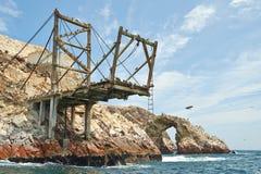 在Ballestas海岛的平台 免版税库存照片