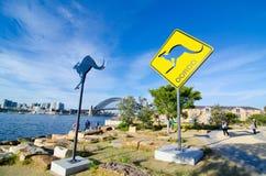 在Barangaroo的偶象袋鼠雕塑 它` s释放对公开室外陈列在壮观的港口海滩公园 库存图片