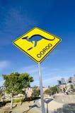 在Barangaroo的偶象袋鼠雕塑 它` s释放对公开室外陈列在壮观的港口海滩公园 免版税库存图片
