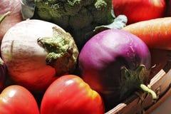 在Basket_7的素食者 库存图片