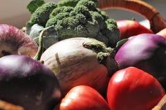 在Basket_6的素食者 库存图片