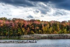 在Bay湖的秋天 免版税图库摄影