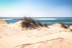 在Bazaruto海岛上的白色沙丘 库存照片