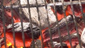 在BBQ格栅坑与火焰,特写镜头的发光的热的木炭 灼烧的煤炭关闭  影视素材