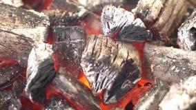在BBQ格栅坑与火焰,特写镜头的发光的热的木炭 灼烧的煤炭关闭  股票视频