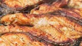 在bbq的油煎的烤三文鱼 从白汁和柠檬的卤汁 股票视频