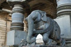 在Beluru,卡纳塔克邦,印度的石大象雕象 免版税库存照片