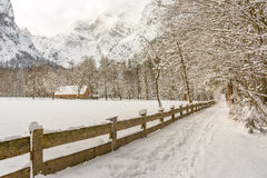 在berchtesgadener国家公园的惊人的风景 库存图片