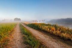在Berezino,河berezina附近的早晨 免版税库存图片