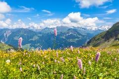 在Bernese Oberland的远足的道路上 库存图片