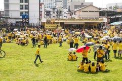 在Bersih 4集会的人群聚集在古晋 库存照片