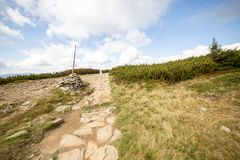 在Beskid山的供徒步旅行的小道在波兰 库存图片