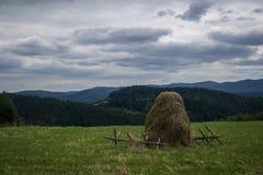 在Beskidy山 库存图片
