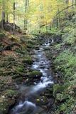 在Beskydy山的秋季小河 库存图片