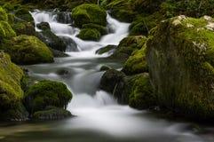 在Bigar小河的瀑布 免版税图库摄影