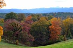 在Biltmore庄园庭院的秋叶,阿什维尔NC 免版税库存照片