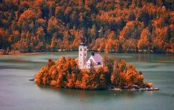 在Bled湖的秋天视图有Assumptio的朝圣教会的 库存图片