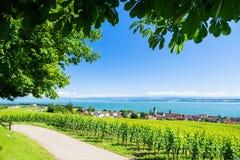 在Bodensee的看法与阿尔卑斯山脉在背景中 免版税库存图片