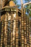在Bodhi树化合物,斯里兰卡的装饰篱芭 免版税库存照片