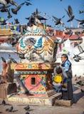 在Bodnath stupa附近的西藏妇女 库存图片