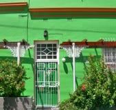 在BoKaap,开普敦,南非绿化有白色窗口的被绘的房子 免版税图库摄影