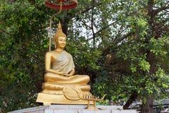 在bokeh树背景的金黄雕象菩萨 免版税图库摄影
