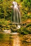 在Boquete附近的失去的瀑布在巴拿马 免版税图库摄影
