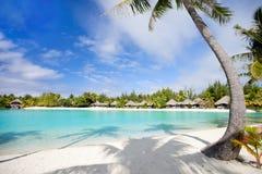 在Bora Bora的美丽的海滩 库存照片