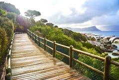 在boulder& x27的企鹅; s海滩有海边的开普敦南非 免版税库存图片