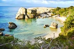 在boulder& x27的企鹅; s海滩有海边的开普敦南非 库存图片