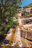 在Bowling Green海湾国家公园, Alligato的美丽的瀑布 库存照片